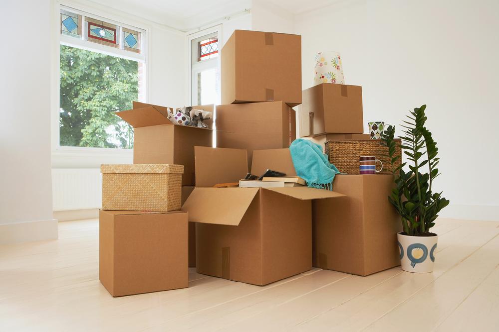 אירזת בית לקראת מעבר דירה